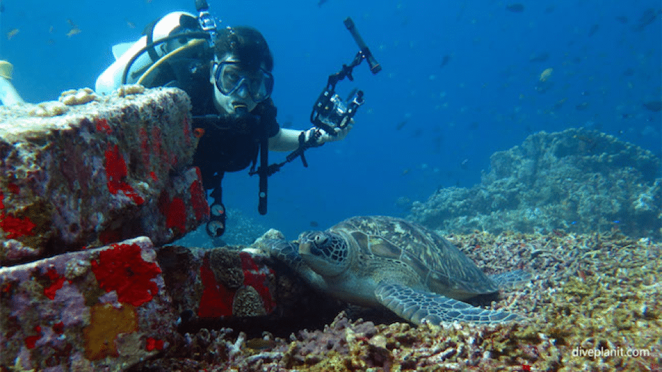 south east asia diving sites in indonesia
