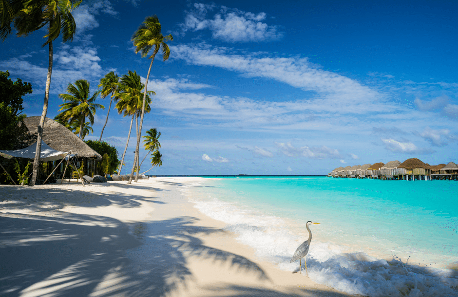 Top halal friendly island destinations in the world