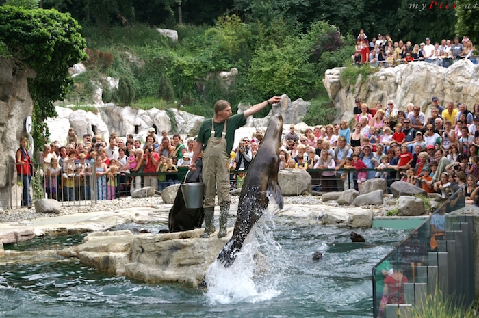 Bbest places to visit - Vienna Zoo